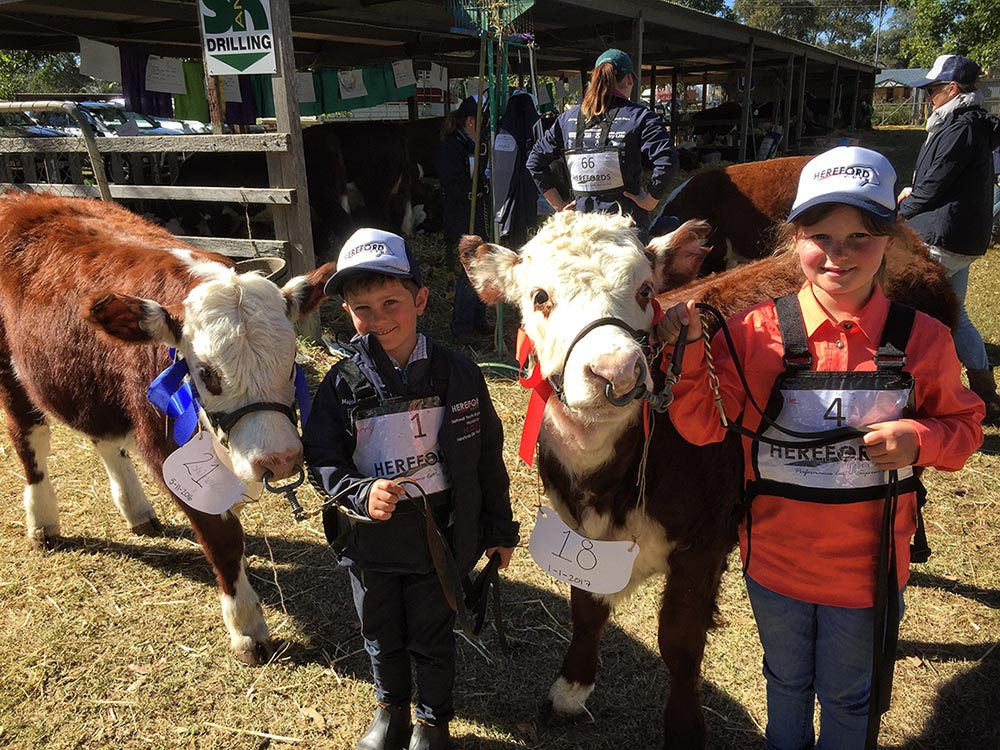 Harry & Isabelle at the Herefords Australia National Youth Show at Pittsworth, July 2017