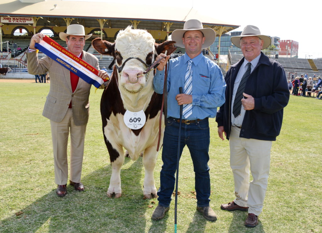 Grand champion Hereford bull, Wallan Creek Victory Blend J346 owned by Toby and Jane Nixon, Wallan Creek Herefords, Drillham.
